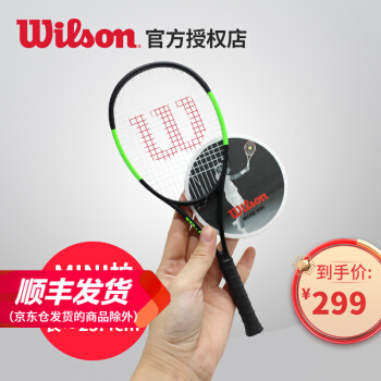 WilsonWilon Mini縮小版Feder raket WRZ 733011